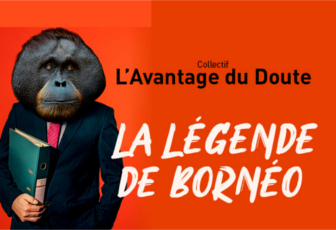 Le secret des orangs-outans
